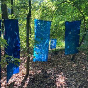 cyanotypes-fabric-B-Collé